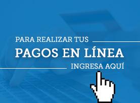 pagos_en_linea_fundonal